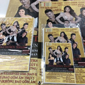 Vietnamese Event Posters and Flyers